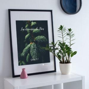Poster / Carte